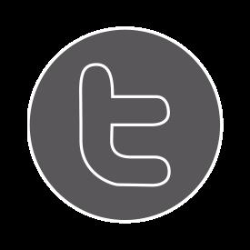 alleborgh twitter